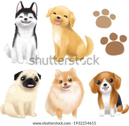 dogs vector illustration breed puppy cute, dog cartoon, dog painting, pug, Siberian Husky, golden retriever, Pomeranian,  Beagle, puppy white back ground isolated, pet animal doggy paw .