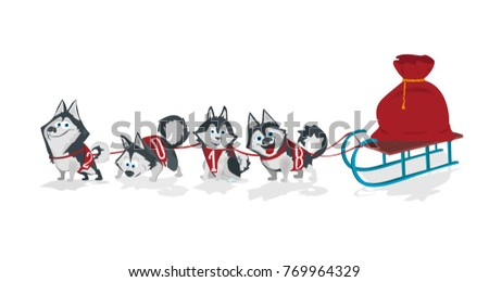 dogs with numbers 2018 sled