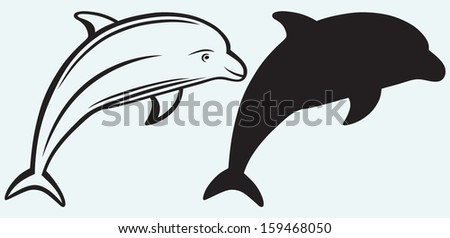 Dolphin isolated on blue background - stock vector