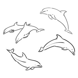 Dolphin Line Art Doodle, a hand drawn vector cartoon illustration of a cute dolphin.