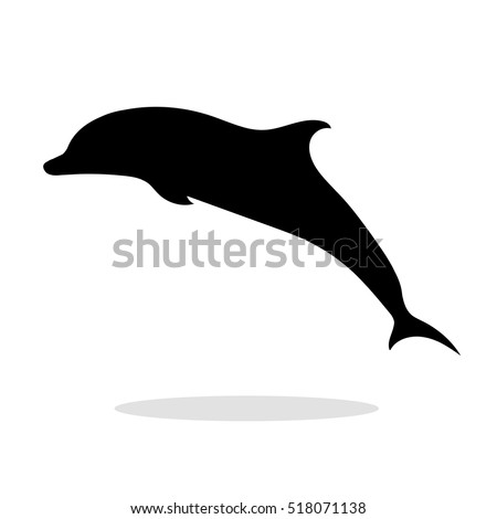 dolphin sea animal black