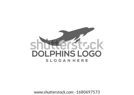 dolphins logo design vector