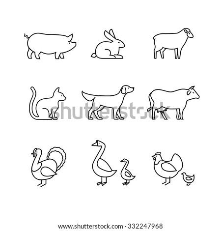 domestic and farm animals thin