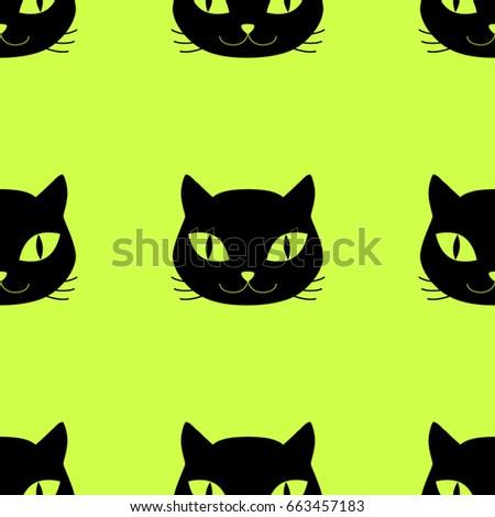 domestic cat head pet