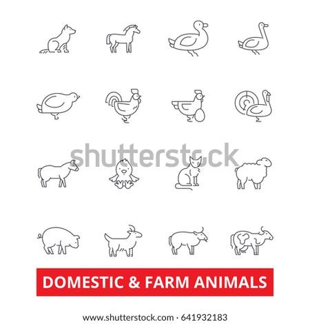 domestic farm animals line