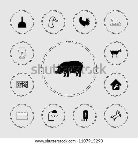 Domestic icon. collection of 13 domestic filled and outline icons such as pig, goat, dustpan, home repair, geyser, goose, sponge. editable domestic icons for web and mobile.