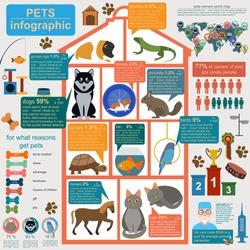 Domestic pets infographic elements, healthcare, vet. Vector illustration