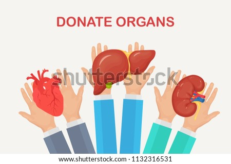 Donate internal human organs. Nation donor day. Transplantation, volunteering concept. Vector flat design