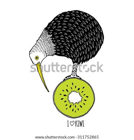 doodle art print of kiwi bird