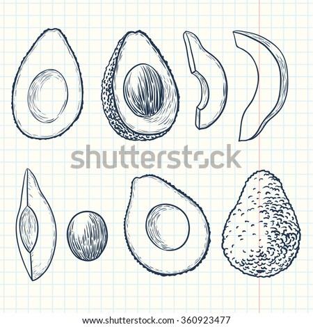 Doodle avocado set