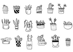 Doodle cactus, flowers and leaves square on a white background
