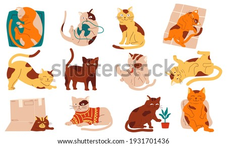 Doodle cats. Funny home pets walking sleeping playing and stretching, purebred cartoon domestic animals collection. Cheerful fluffy adorable kitten in different poses vector modern simple isolated set