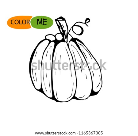 Doodle pumpkin.Vector paint hand drawn picture in cartoon style. Stock illustration. Colored for children #1165367305