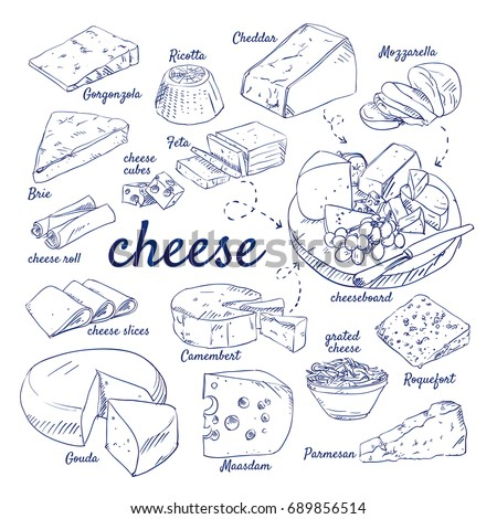 Doodle set of Cheese board - Gorgonzola, Ricotta, Cheddar, Mozzarella, Brie, Feta, Camembert, Gouda, Maasdam, Parmesan, Roquefort, hand-drawn. Vector sketch illustration isolated over white background