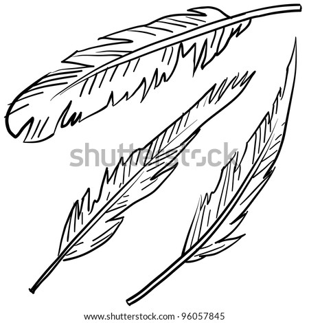 Doodle style bird feathers illustration in vector format - stock vector