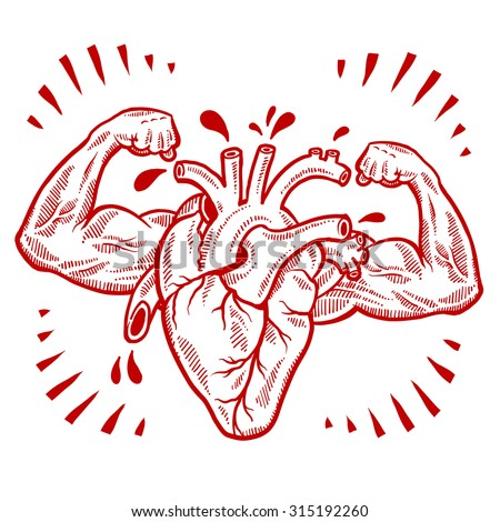 Doodle style vector drawing of a muscular heart indicating fitness, health, exercise, or cardiovascular medicine.