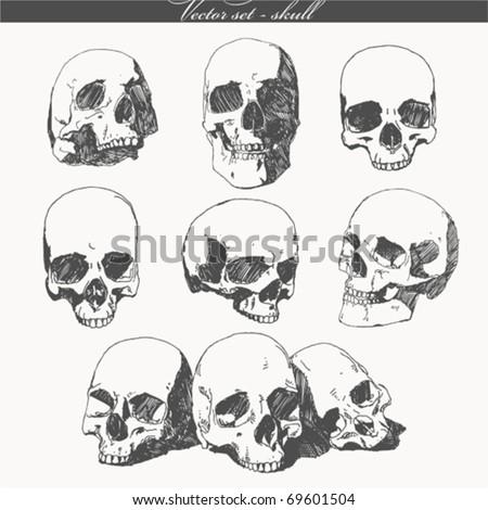 doodled skulls
