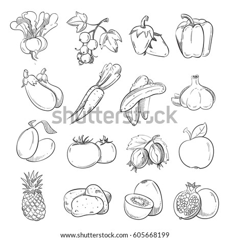 Doodles of vegetables and fruits, hand drawing vegan cooking food icons. Cucumber and pepper, Collection of fruit hand sketch illustration #605668199