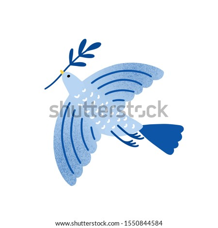 Dove with olive branch vector illustration. Bird, pigeon holding plant twig isolated on white background. Traditional Jewish holiday symbol. International peace and freedom metaphor. stock photo