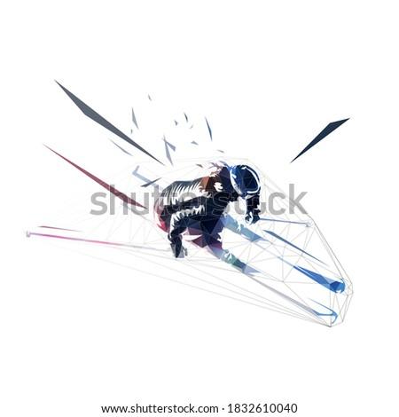 downhill skier  slalom low