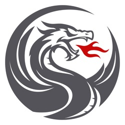 Dragon fire circle icon vector design