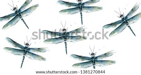 dragon fly pattern vector