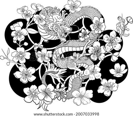 dragon illustration for