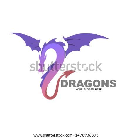 dragon logo design illustration