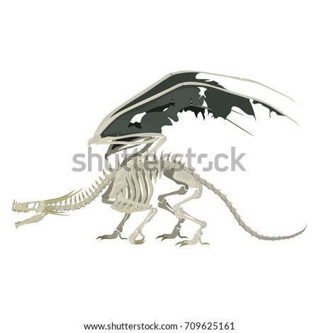 dragon skeleton vector
