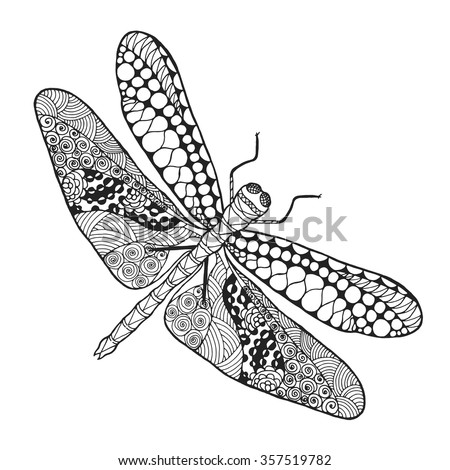 dragonfly animals hand drawn