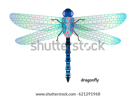 Dragonfly - one of the most ancient animals that exist now on the planet