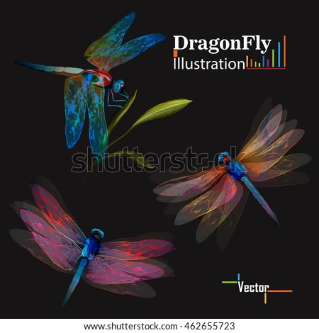 dragonfly set of three