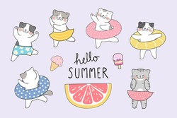 Draw vector illustration character design collection funny cat on the beach.Summer concept.Doodle cartoon style.