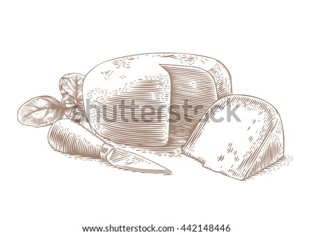 Drawing of head of cheese with cheese knife and fresh green basil