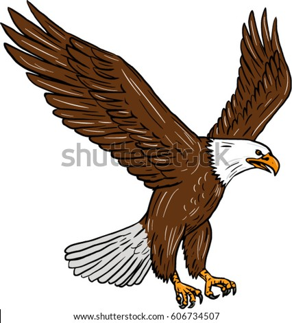 Drawing sketch style illustration of bald eagle flying wings flapping viewed from the side set on isolated white background.