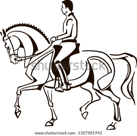 Saddle Horse Random Royalty Free Vectors