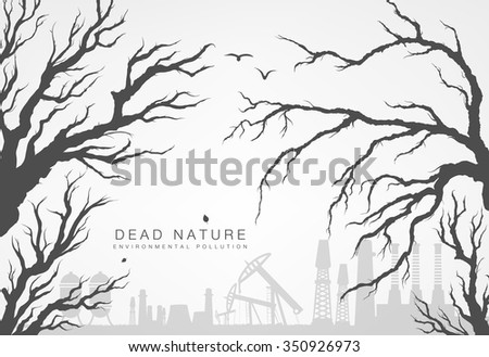 dried branches of trees with