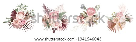 Dried pampas grass, rose, protea, orchid flowers, tropical palm leaves vector bouquets. Pastel watercolor floral template isolated collection for wedding wreath, bouquet frames, design decoration