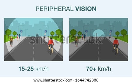 Driving a car. Peripheral vision while driving. Road safety. Flat vector illustration. Stock photo ©