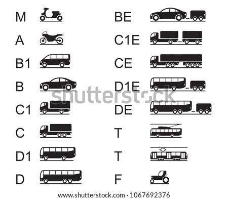 Driving licences for different road vehicles - vector illustration