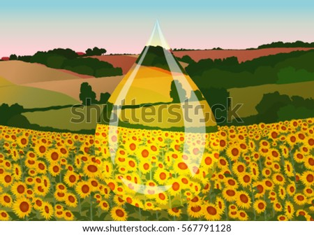 drop of sunflower oil on the