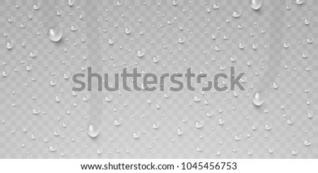 drops of water  dew falls rain