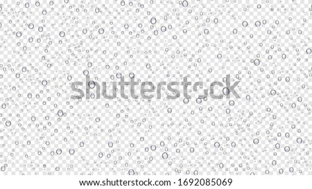 Drops water rain on transparent background, realistic style, vector elements. Clean drop condensation. Vector pure bubbles on window glass