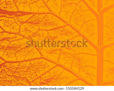 dry autumn leave template eps