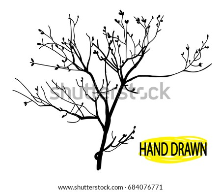 dry branch tree branch without
