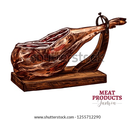 Dry-cured pork vector sketch illustration. Spanish jamon iberico or serrano on hamoneria isolated on white background in hand drawn engraving style. Farm meat product