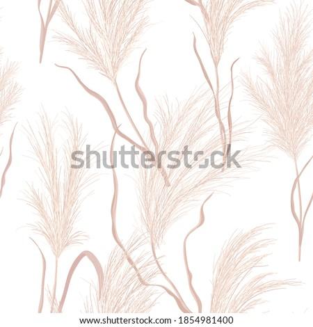 dry pampas grass seamless