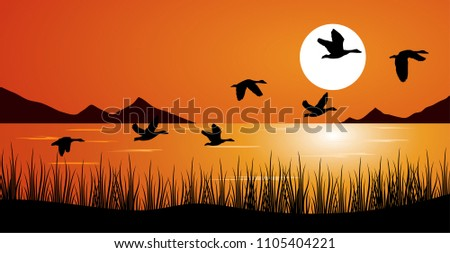 duck or teal birds flying over