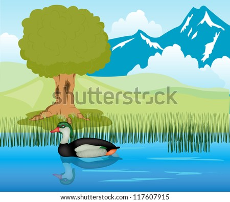 duck sails in lake amongst