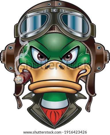 duck with leather flying helmet